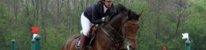 equestrian eventing horse trials dressage
